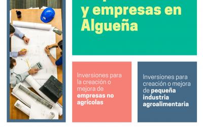 AYUDAS LEADER PARA EMPRENDEDORES/AS Y EMPRESAS DE ALGUEÑA